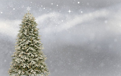 14 Christmas Tree facts you might not know